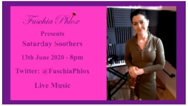 Fuschia Phlox poster