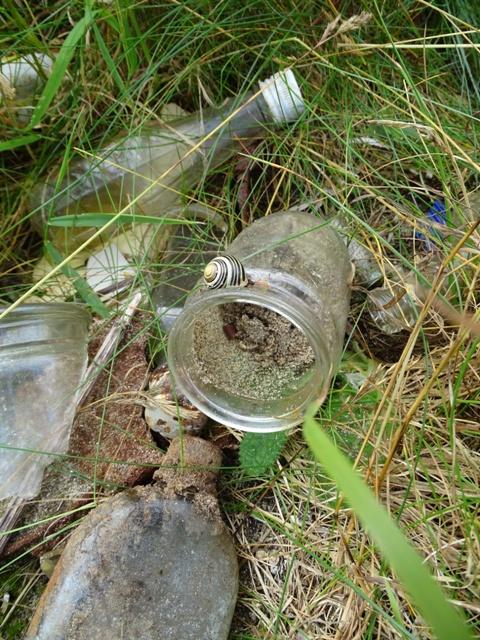 bottle dump Dingieshowe beach credit Bell