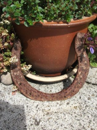 large horseshoes credit Bell