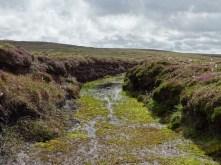 wet track Birsay moors credit Bell