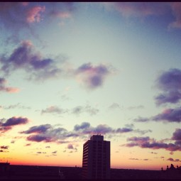 View from my rooftop.