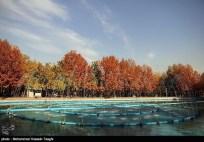 Razavi Khorasan, Iran - Mashhad in Autumn 02