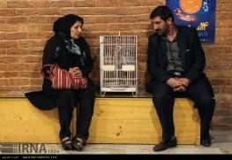 Tehran, Iran - Veterinary Hospital in Tehran 12
