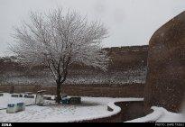 Iran, Kerman Winter Snow 01