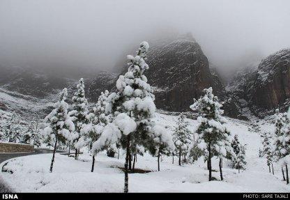 Iran, Kerman Winter Snow 07