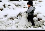 Snow Kerman Iran Snowballs 12