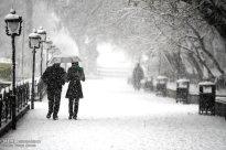 Snowfall in Tabriz Iran 8