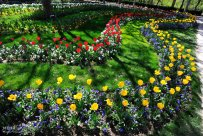 Alborz, Iran - Karaj, Chamran's Park Flower Garden 9