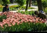 Tehran, Iran - Persian Garden Park 70
