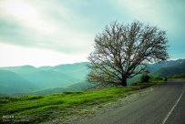 East Azerbaijan, Iran - Kaleybar in spring 14