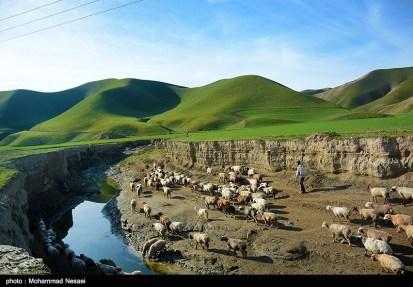 Golestan, Iran - Turkmen Sahra (Plain of Turkmens) 1