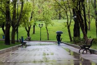 Tehran, Iran - Sudden spring rain in Tehran 03