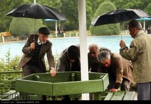 Tehran, Iran - Sudden spring rain in Tehran 18