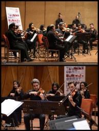 Tehran Contemporary Music Festival 2016 - Nilper Orchestra - 01a - Iran