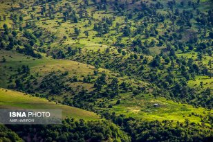 Semnan and Golestan Provinces, Iran - Cloud Forest (Jangal-e Abr) - 07