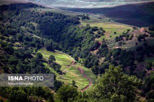 Semnan and Golestan Provinces, Iran - Cloud Forest (Jangal-e Abr) - 09