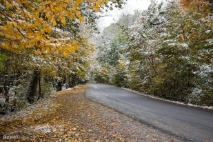 Autumn snow in Gorgan - Golestan, Iran (Photo credits: MEHR)