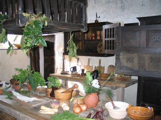 Plas Mawr - kitchen