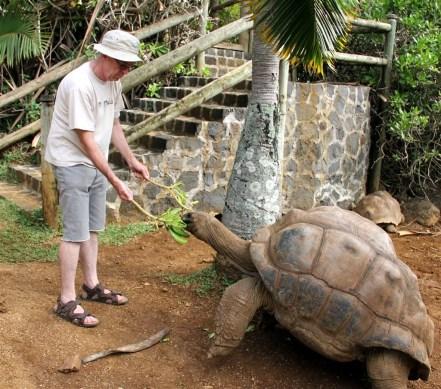Feeding the Aldabara Giants