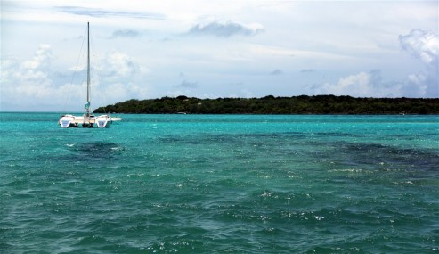 Rich turquoise water