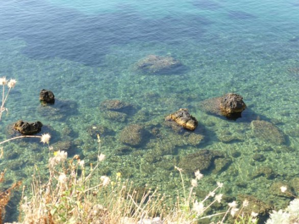 The water is so clear & inviting