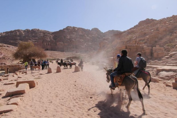Petra - lots of bedoiun and or gypsy boys offering donkey transport.