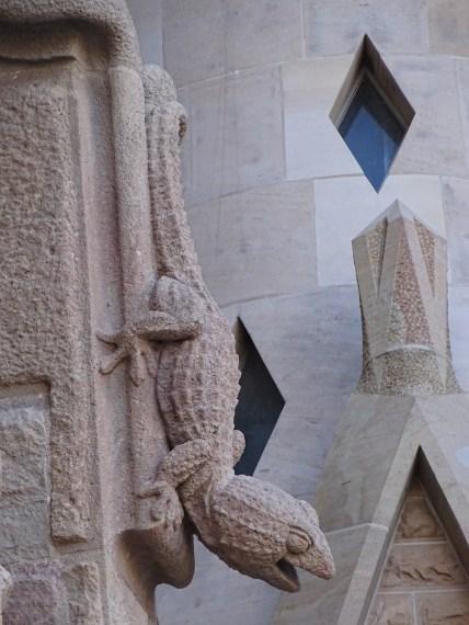 La Sagrada Família - images from nature