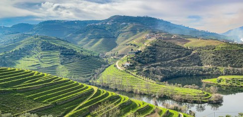 Driving through the Douro Valley