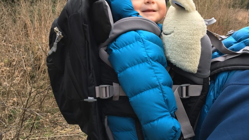 Review: Vaude Shuttle Premium child carrier