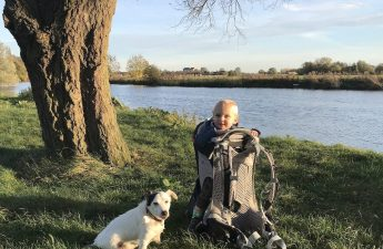 walking with a dog and toddler