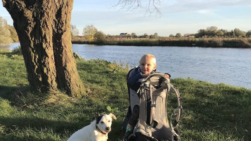 Why walking with a dog and toddler is a pain in the arse!