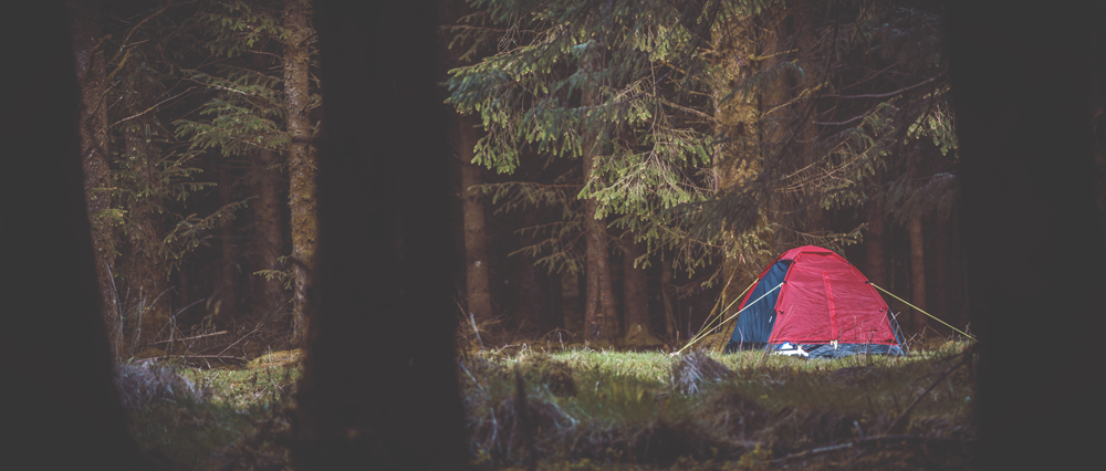 Wild Camping on Dartmoor tent in forest