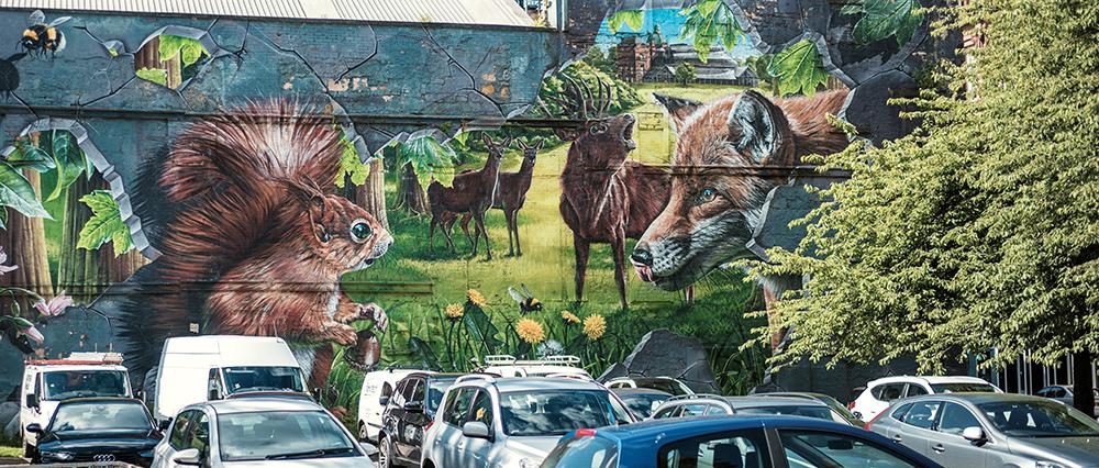 Glasgow Graffiti