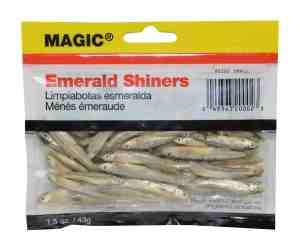 Preserved Emerald Shiners for Fishing
