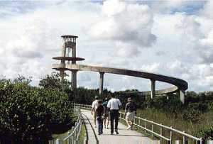 The Observation Tower at the midway point of Shark Valley