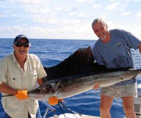 Sailfish charter Florida