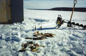 Everything you need for Ice Fishing!