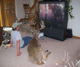 The Return of Hunting Season