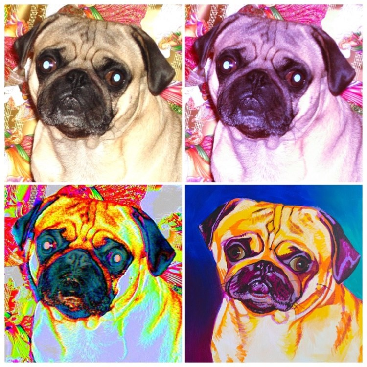 pet portrait painting tips: examples of 4 different digital processes using photo editing apps to visualize painting color palette