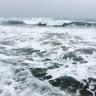 Surfy haunt of surfperch