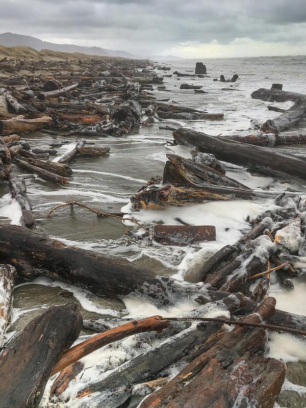 High tides and big surf mobilize drift logs