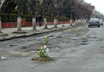 Tulips-in-road-holes