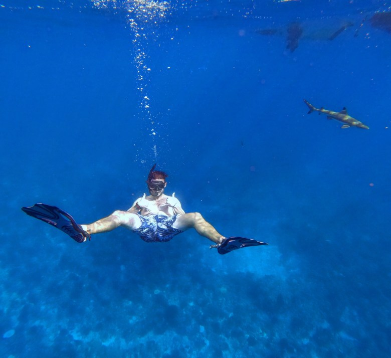 Swimming with black tip reef sharks off the coast of Mo'orea.