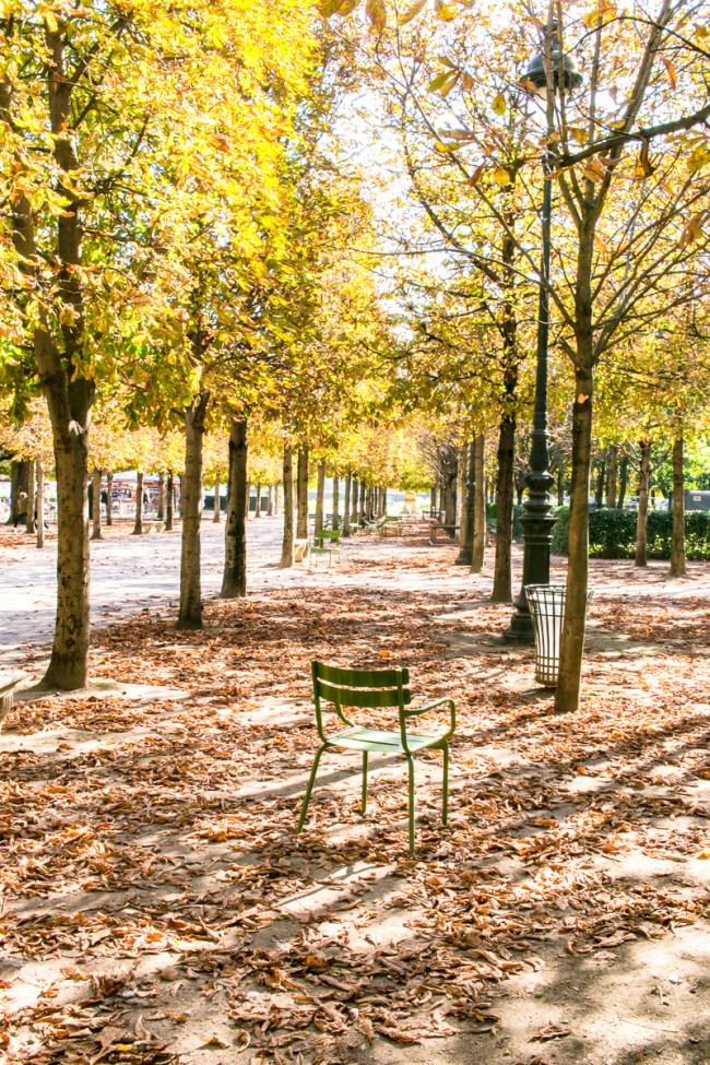 the-overseas-escape-paris-fall-2016-12