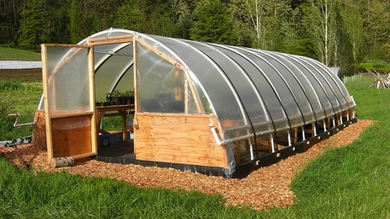 Build Your Own Shed Cheap