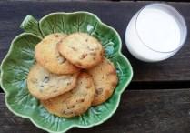 https://thepaddingtonfoodie.com/2012/10/27/chocolate-chunk-cookies-with-pecans/