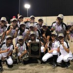 PAG METER SOFTBALL TOP 30 FINAL  RANKINGS 2019