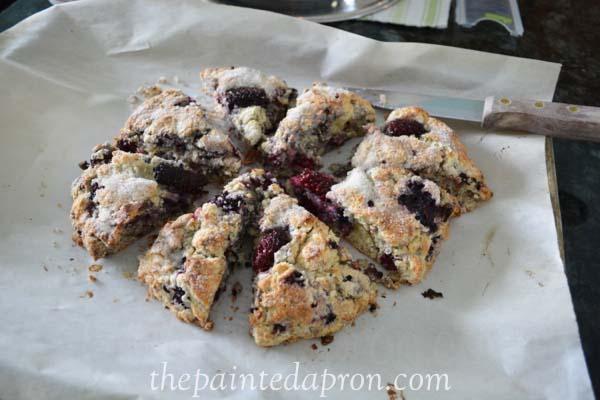 blackberry scones thepaintedapron.com