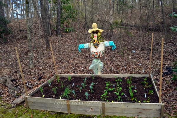 garden girl scarecrow thepaintedapron.com