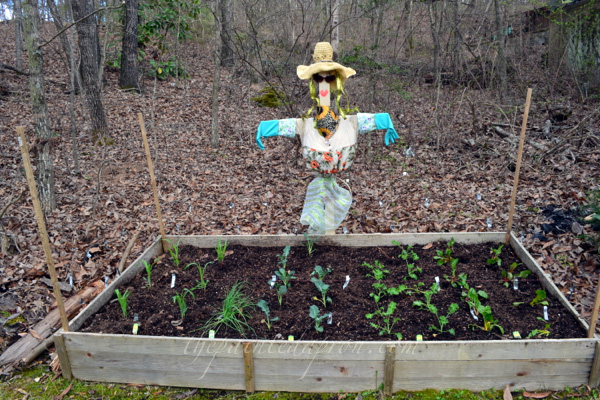 garden scarecrow thepaintedapron.com